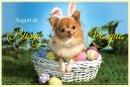 Buona Pasqua con cane con orecchie da coniglio